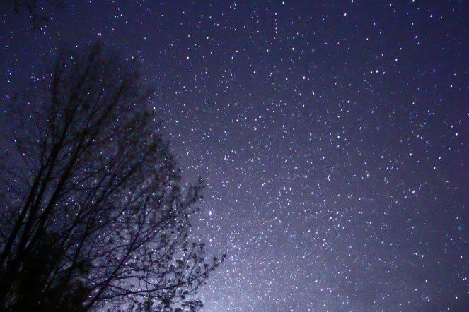 starsblog2