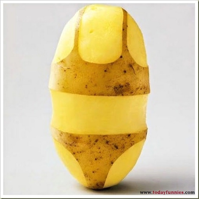 Potato-In-A-Bikini-Dress-Funny-Potato-Photos