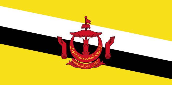 drapeau-brunei