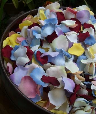 flower-petals-19