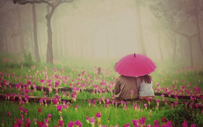couple-sitting-under-pink-umbrella-in-a-pink-flower-field-1680x1050-wide-wallpapers.net