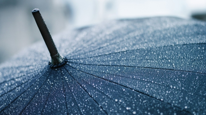 rain-drops-on-black-umbrella-HD