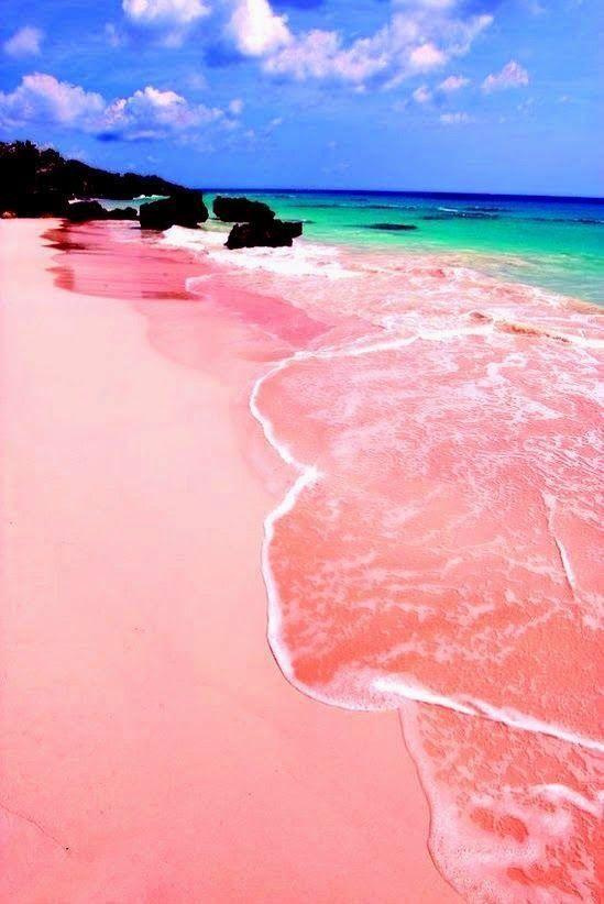 2598984b341ae3f4a4bd1e726f125fc3--pink-sand-beach-bermuda-pink-beach